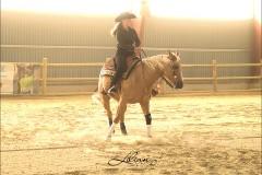reining10