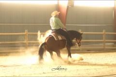 reining11