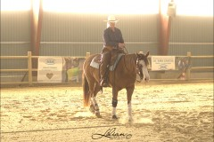 reining12