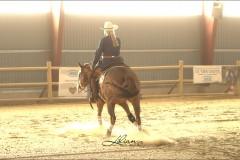 reining13