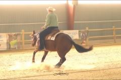 reining14