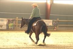 reining16
