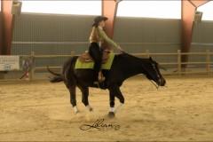 reining17