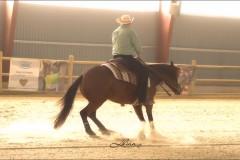 reining19