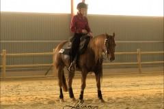 reining20