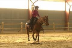 reining22