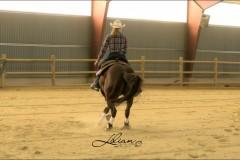 reining25