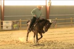 reining27