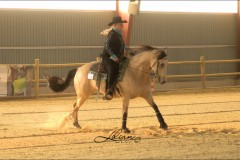 reining28