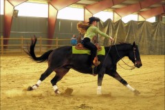 reining29