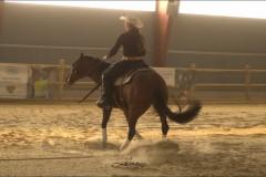 reining3