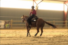 reining30