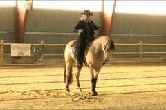 reining31
