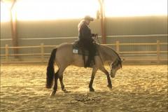 reining32