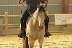 reining33