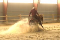 reining34