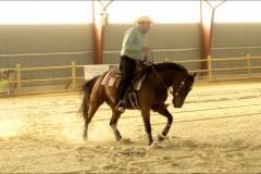 reining35