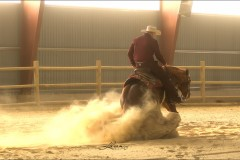 reining36