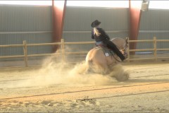 reining37