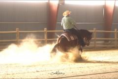 reining6