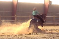 reining8
